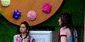 Bigg Boss 13, Day 15 Synopsis: Girls participate in the BB Bank task; Siddhartha Dey breaks Shefali's trust