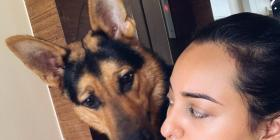 PHOTO: Sonakshi Sinha clicks a candid selfie, gets photobombed by her pet Bronze