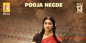 Valmiki: Pooja Hegde as Sridevi in the first look is winning the internet