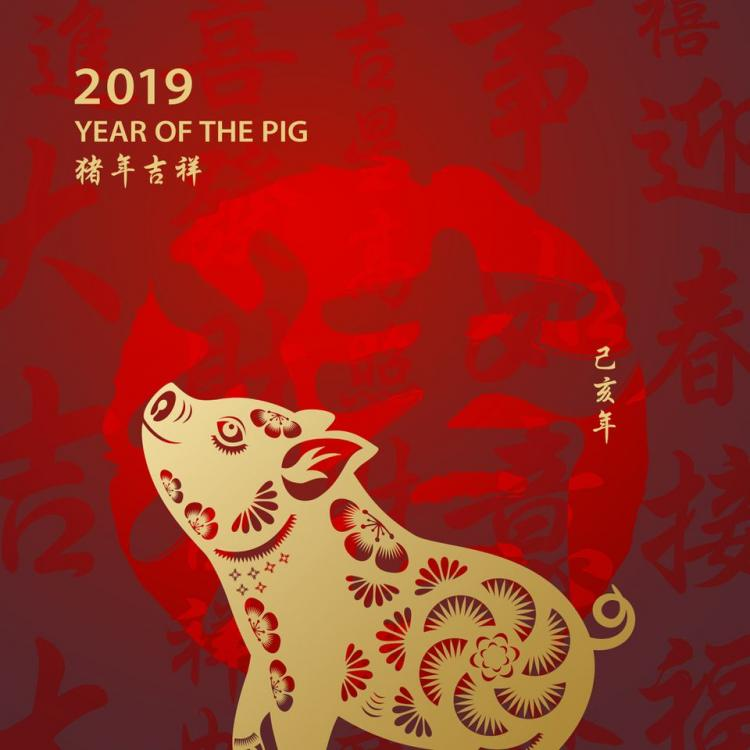 Asia greets year of the pig, farewells the dog