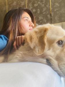 Jennifer Winget, Erica Fernandes, Dipika Kakar: Take a look at actors' photos with their four legged friends
