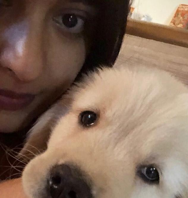 Baahubali actress Anushka Shetty shares an adorable photo with her LOVE; Check it out