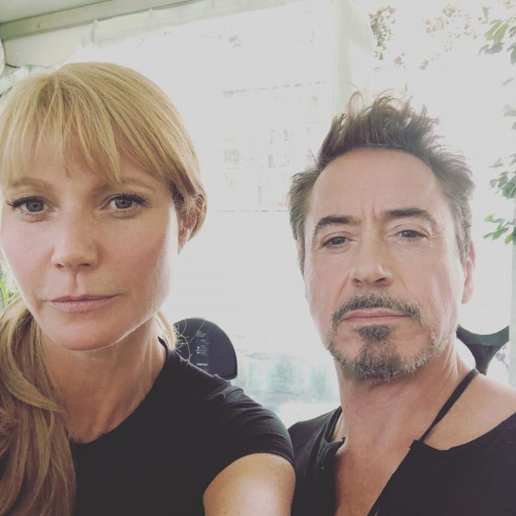 Gwyneth Paltrow accidentally revealed a major Avengers: Endgame spoiler about Tony Stark and her character Pepper Potts.
