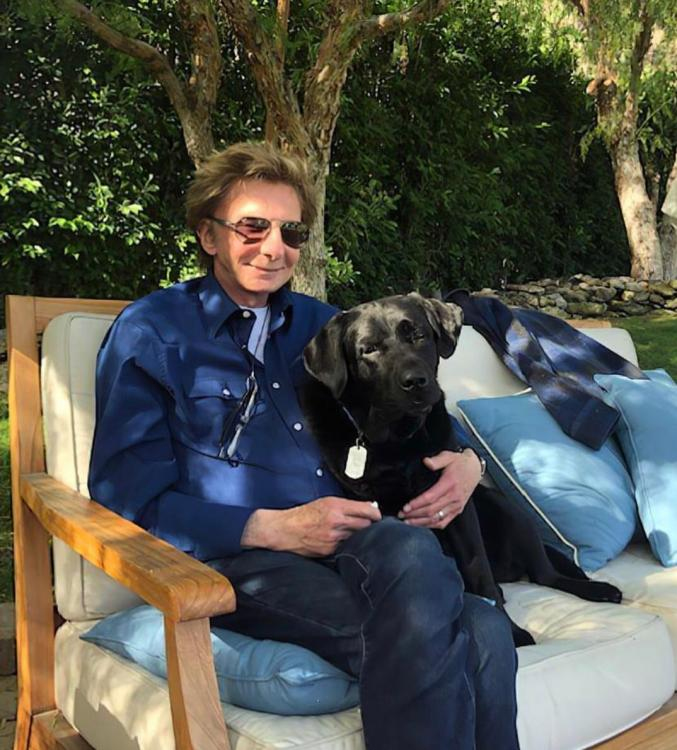 Barry Manilow says coming out as gay sooner would have killed his career