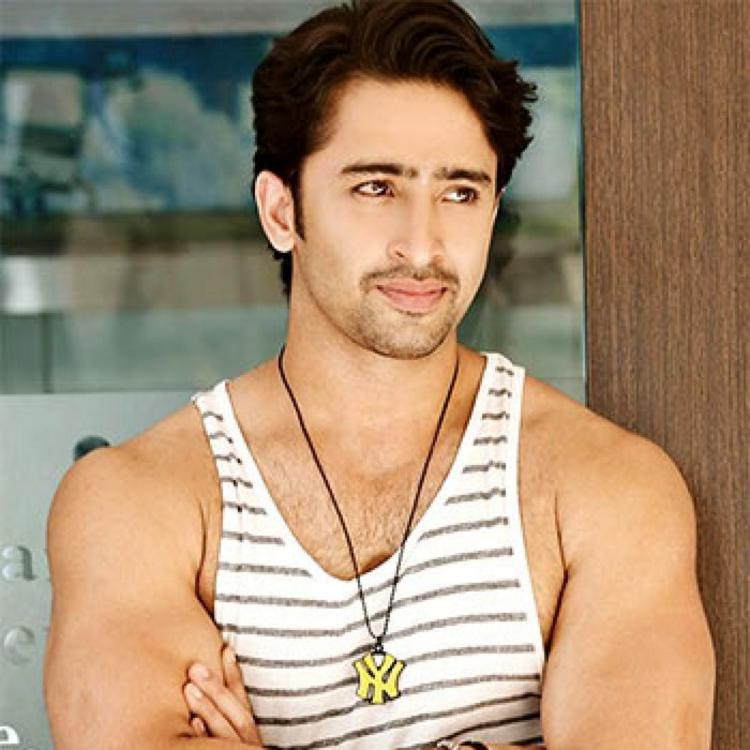 Kuch Rang Pyar Ke Aise Bhi star Shaheer Sheikh REVEALS about his new project
