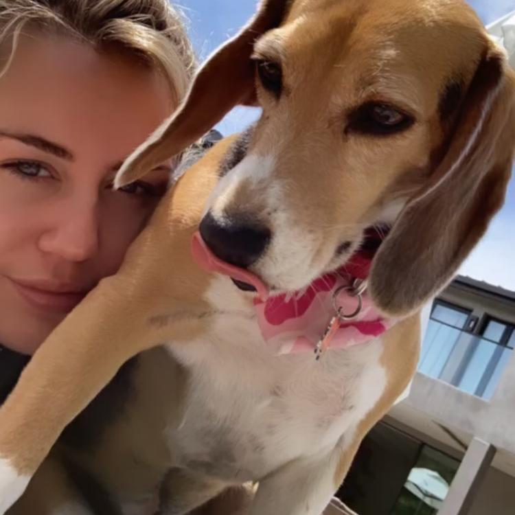 Miley Cyrus pays tribute to her beloved dog who passed away; Check out the posts