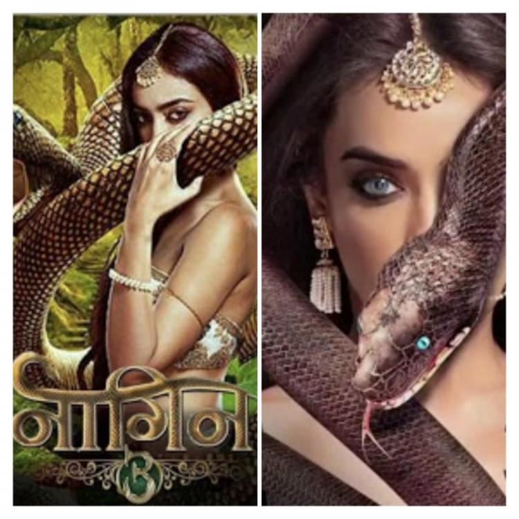 Naagin 3 March 10, 2019 Written Update: Mahir saves Bela from fire