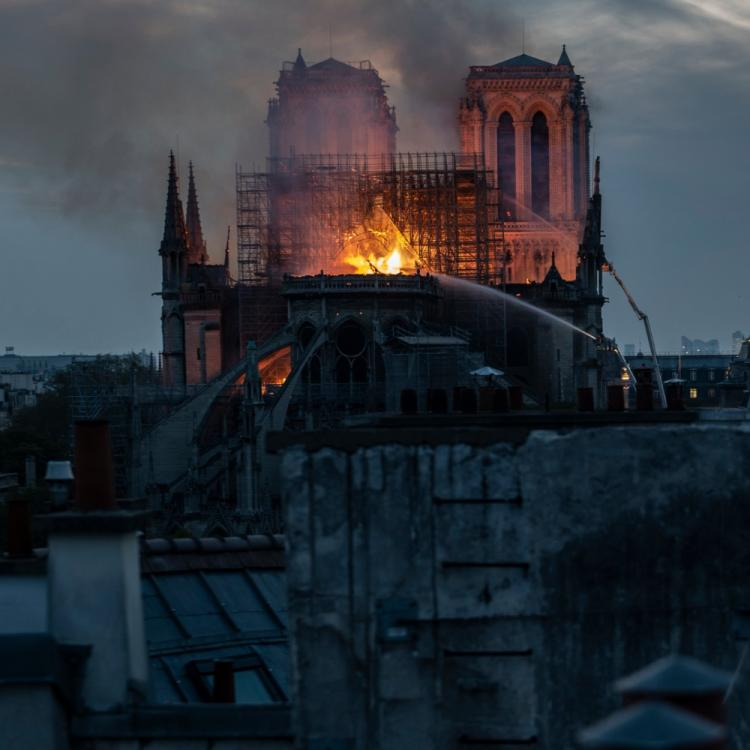 Notre Dame Cathedral fire: Vicky Kaushal to Tamannaah Bhatia, stars upset by the loss to the historical church