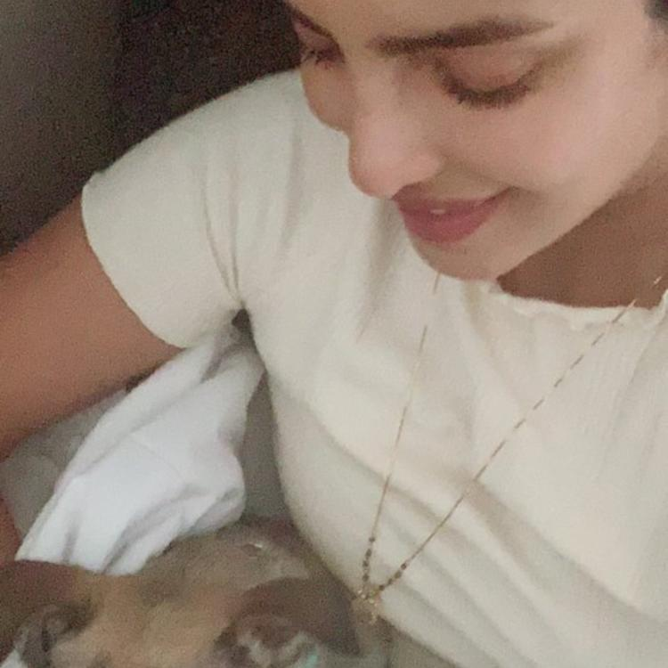 Priyanka Chopra's latest picture with her pet dog Diana is all things love