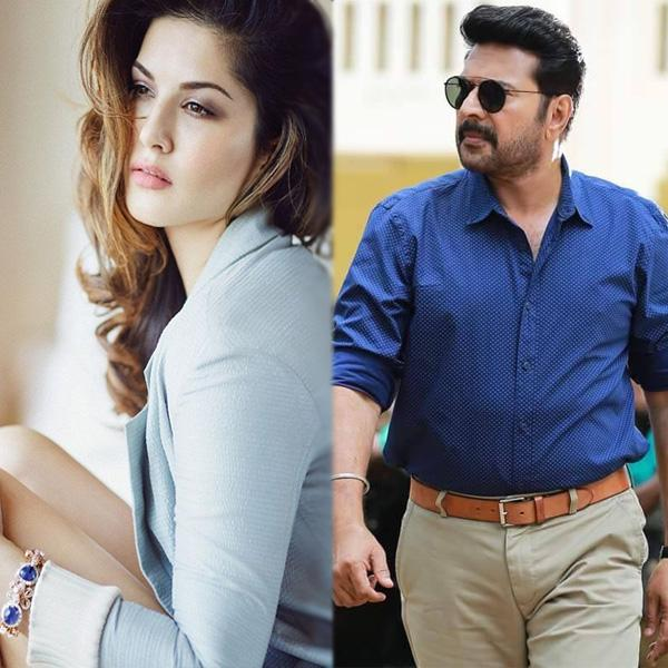 Sunny Leone's next South film with Malayalam superstar Mammootty? Read to know