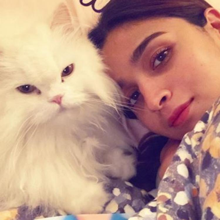 Alia Bhatt enjoys a lazy day off with her pet & shares an adorable photo; writes 'like mother like cat'