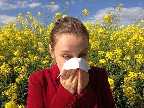 Dust Allergy Remedies: THESE home remedies can help keep the allergy at bay