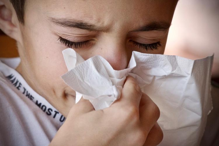 House Tips: Check out THESE easy ways to keep your home allergy proof