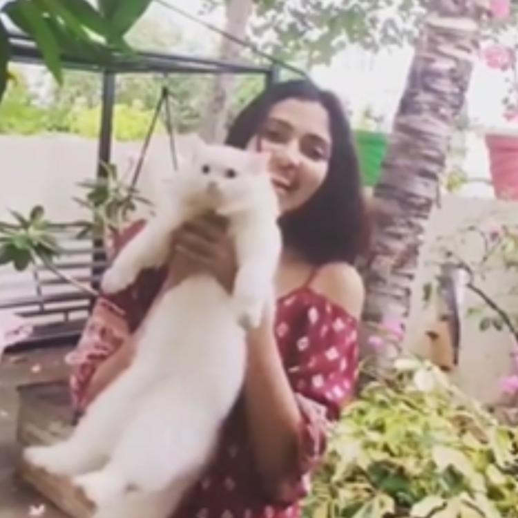Amala Paul shares a delightful video; Says 'Everything is special, my first journey of self love & healing