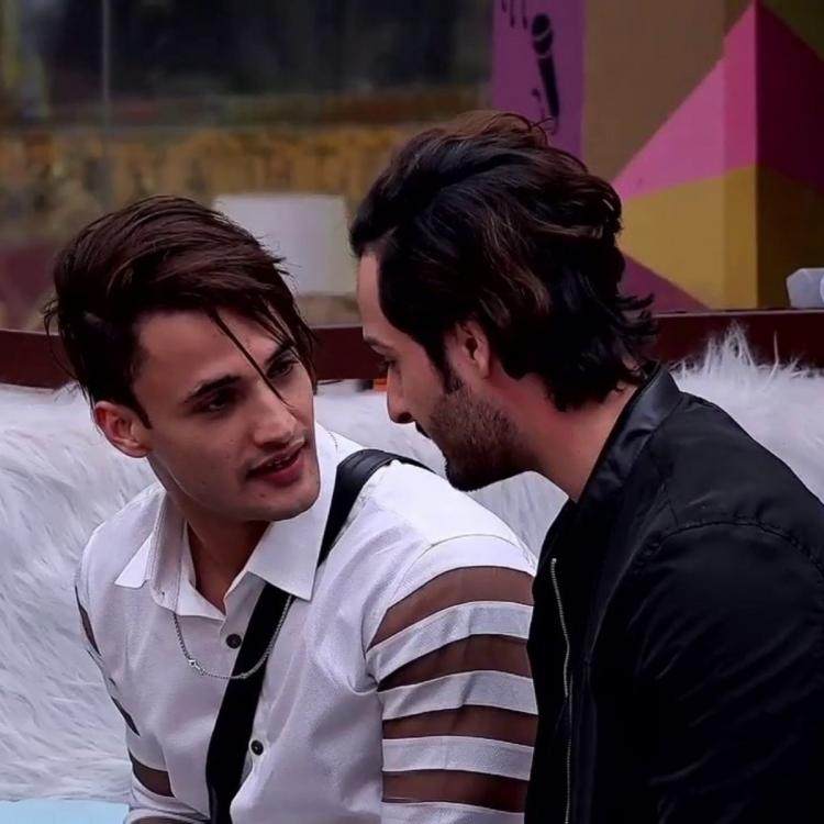 Bigg Boss 13: Fans trend #WhenRiazBrothersMet as Umar Riaz and Asim Riaz have an endearing reunion