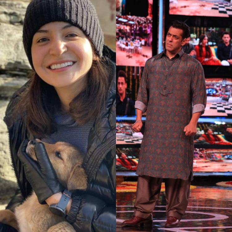 Entertainment News Today, November 10: Anushka Sharma & Virat Kohli's photos, Salman Khan for Bigg Boss 13