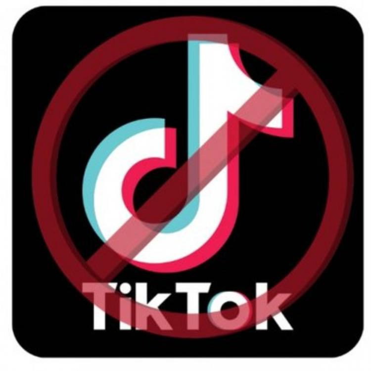 #BanTikTokIndia: Twitterati urge the Government to ban the video sharing social networking service