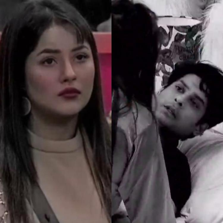Bigg Boss 13 Twitterverse Support Shehnaaz Gill After She