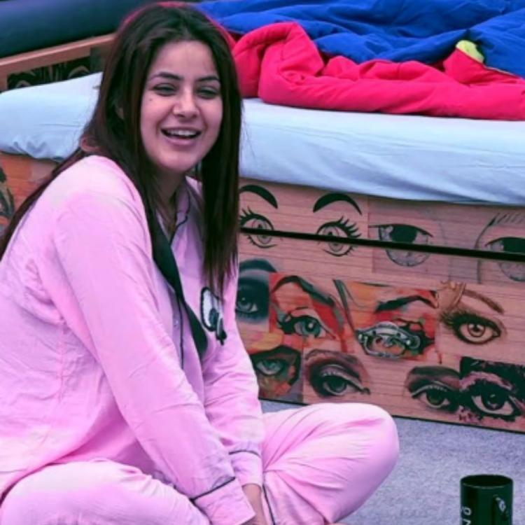 bigg boss 13 written update