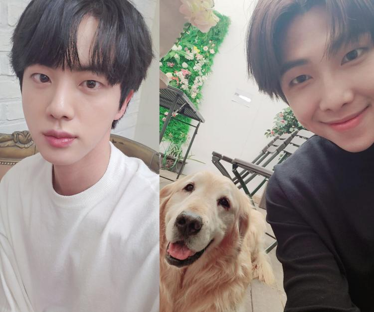 BTS member RM and Jin shared vibrant selfies on Weverse and Twitter, much to the adoration of ARMY.