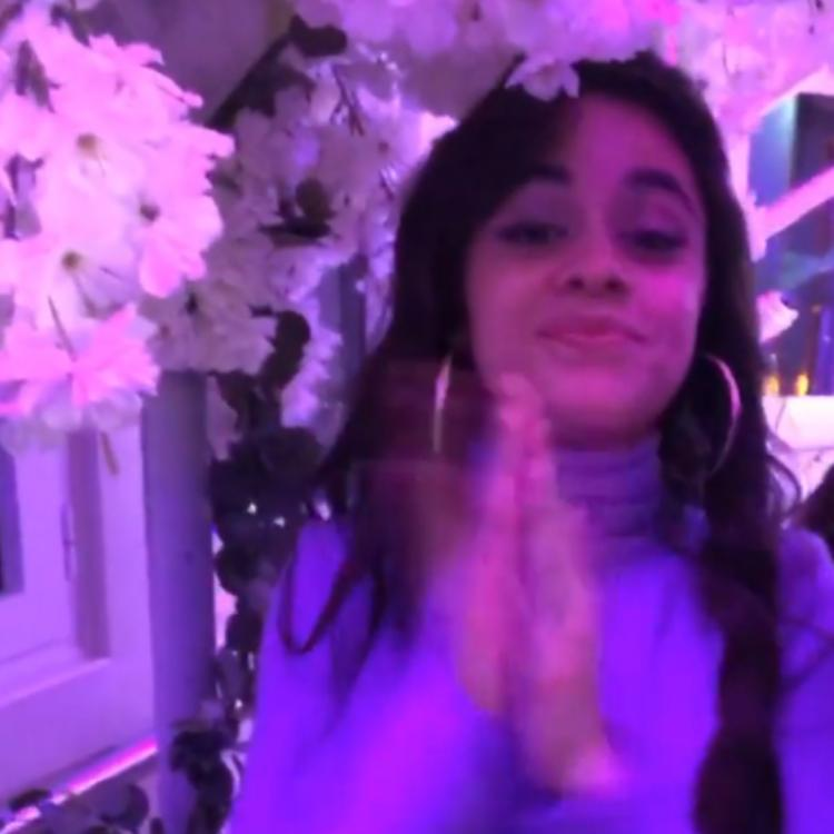 Camila Cabello birthday bash oozed Cinderella vibes & Shawn Mendes is the perfect Prince Charming; See VIDEOS