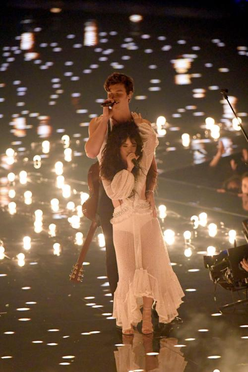 Shawn Mendes and Camila Cabello began dating after the release of Señorita's music video.
