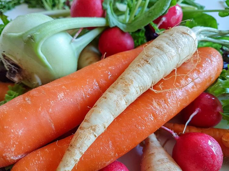 Carrots vs Radish: Find out HOW they contribute to a wholesome diet
