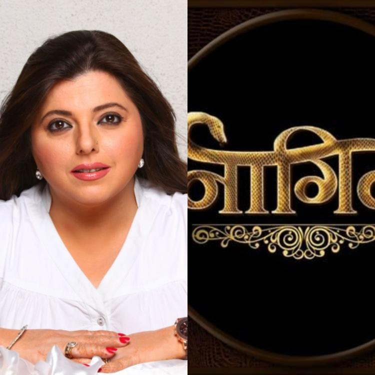 Former Bigg Boss contestant Delnaaz Irani REVEALS she wants to play a plus size Naagin on TV
