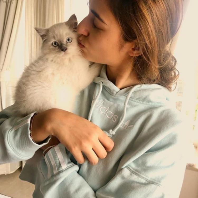 Disha Patani shares an adorable PIC while cuddling her cat and fans are in awe