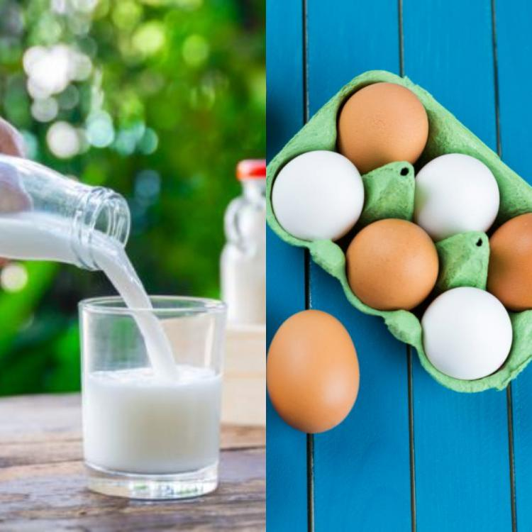 Eggs Vs. Milk: Which one is a healthier protein?
