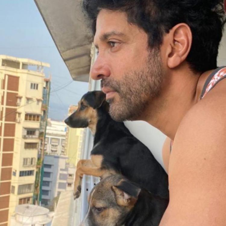 Farhan Akhtar is busy hanging out with the boys & not Shibani Dandekar during this quarantine period; See pic