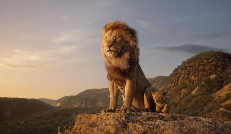 The Lion Kings hits theatre screens on July 19, 2019.