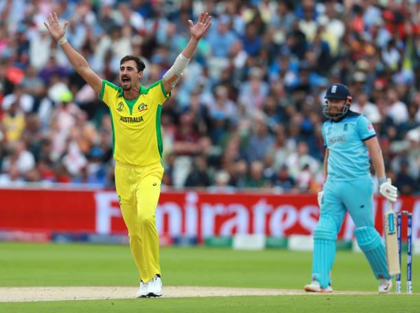 Mitchell Starc breaks Glenn McGrath's record for most wickets taken in an edition of the World Cup