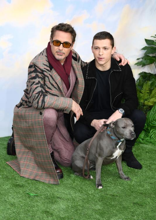 Tom Holland,Robert Downey Jr,Avengers Endgame,Hollywood