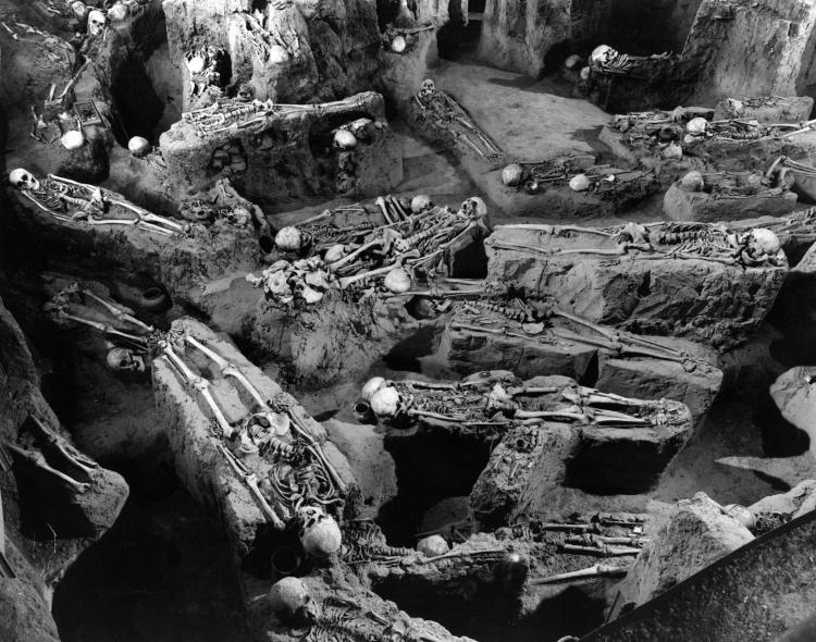 The Black Death: The deadliest pandemic that scared mankind out of its wits
