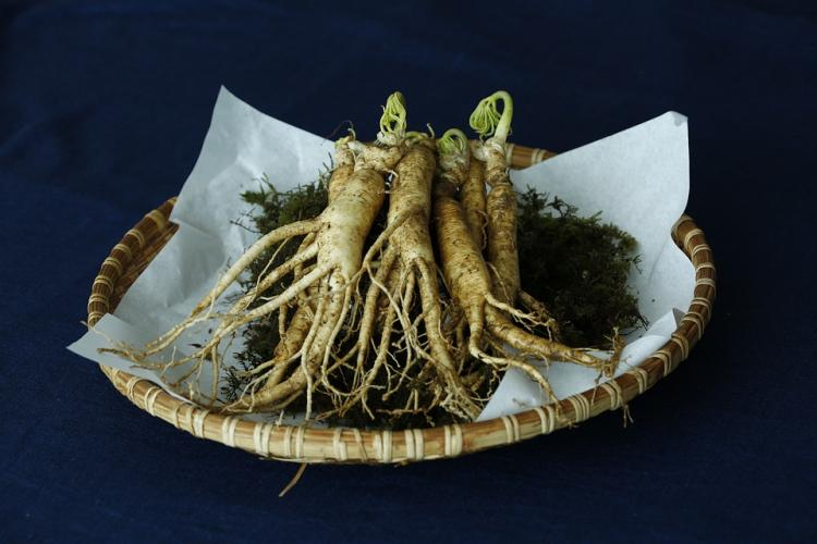 Here's how Ginseng can be beneficial for your hair