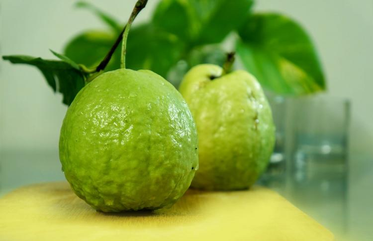 Guava Health Benefits: THESE are the reasons why you must have a guava every single day