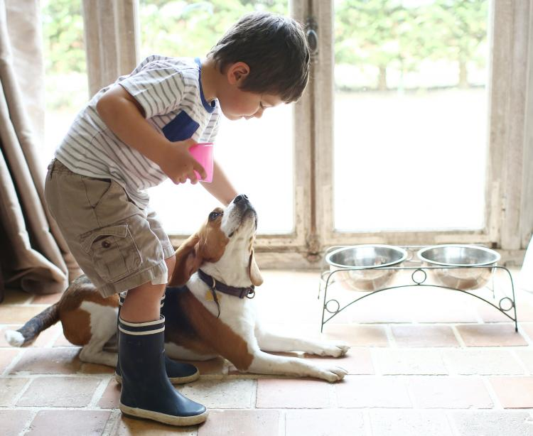 THESE tips can help your child become pet friendly