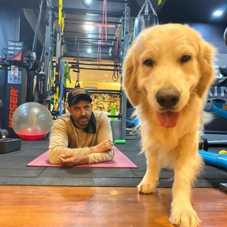 PHOTO: Hrithik Roshan sends a sweet 'stay home' message to fans through his doggo Zane