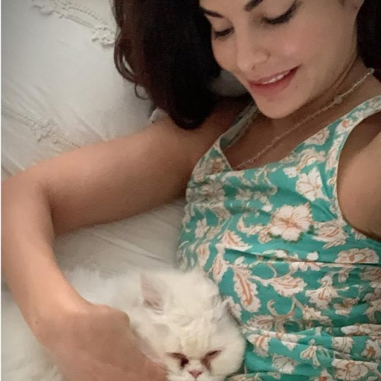 Jacqueline Fernandez greets Monday with a chirpy smile as she snuggles with her cat; See Pic