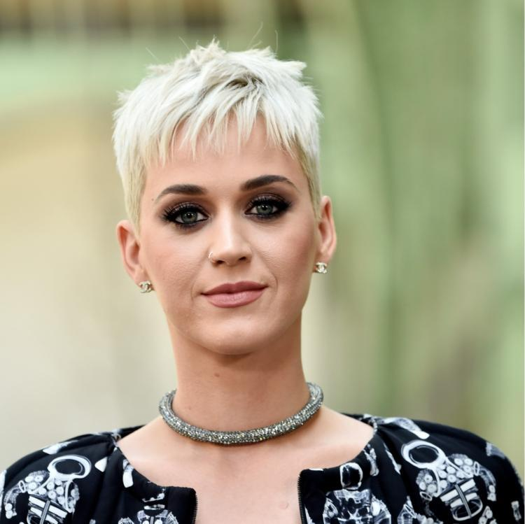 Katy Perry files for retrial in plagiarism case against Marcus Gray