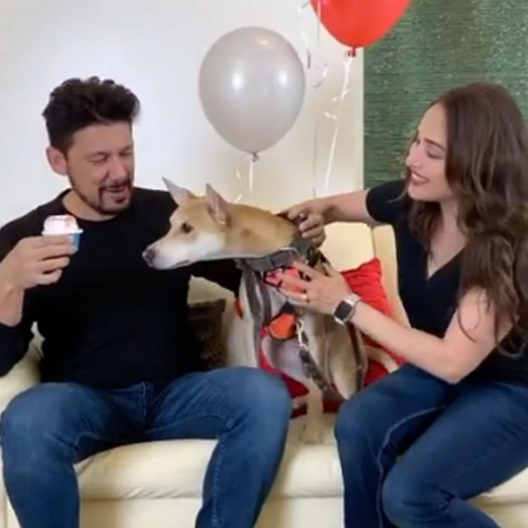 Madhuri Dixit's birthday surprise for husband Shriram Nene is all about cupcake, balloons & pooch love; WATCH