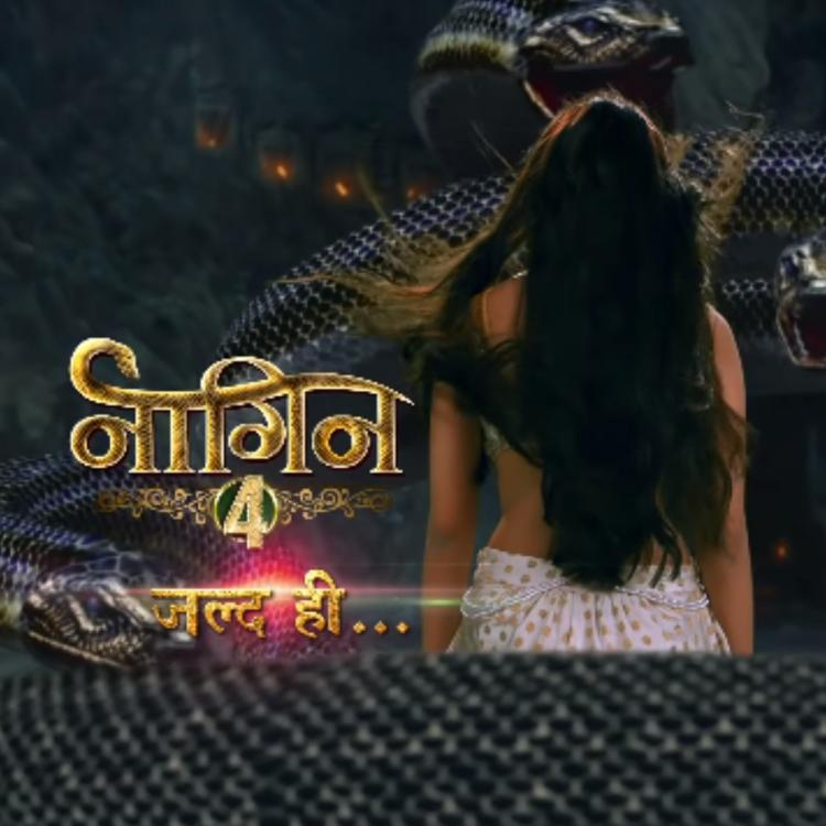 Naagin 4 pushed to December owing to THIS reason; Find Out