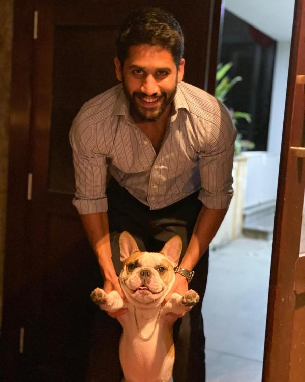 Samantha Akkineni shares an adorable photo of Naga Chaitanya with their pet dog Hash; calls them 'gangsters'