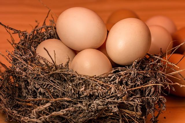 Health Benefits of Eggs: THIS how including egg in your diet can help your overall health