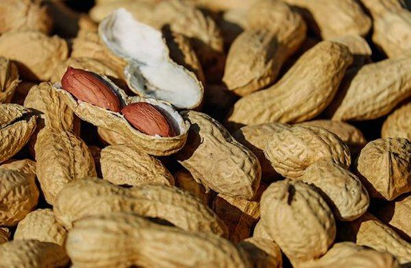 Are you trying to lose weight? Here's how peanuts can help you with it