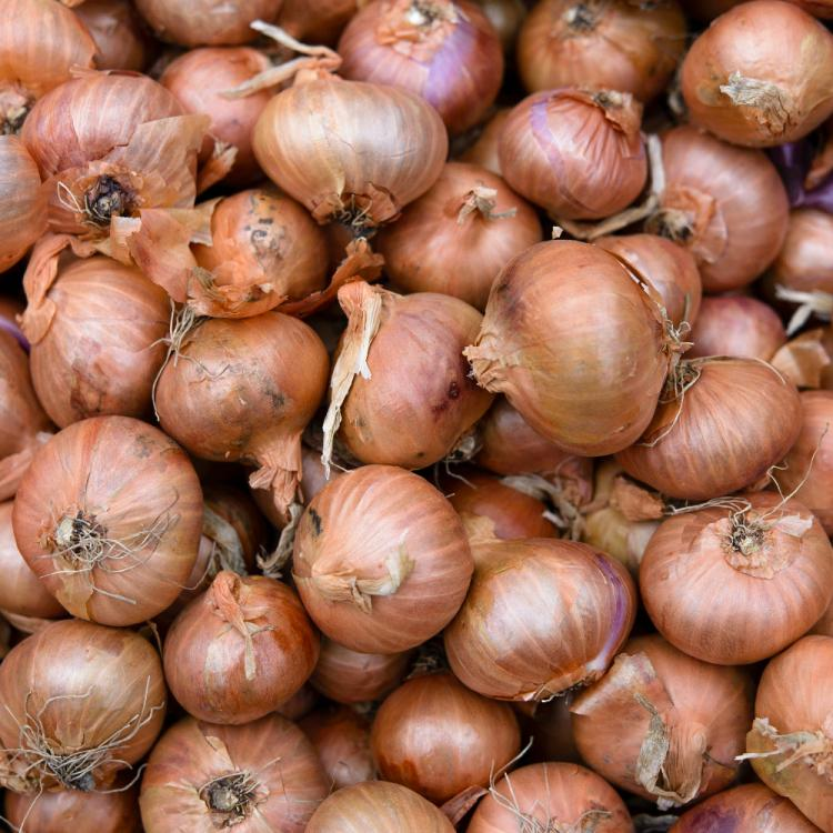 Onion prices hike up like wildfire; Social media gets flooded with hilarious memes