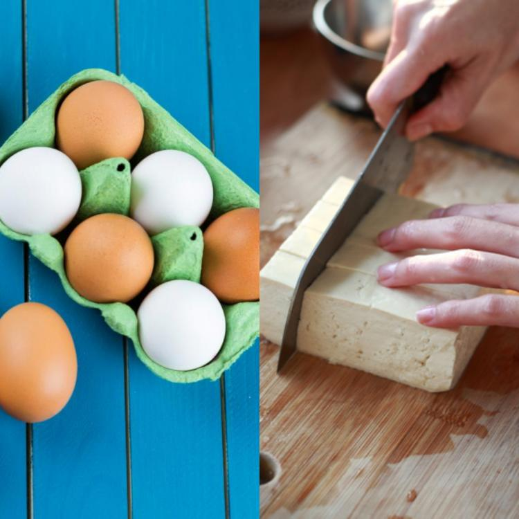 Paneer Vs. Egg: Which is the best source of protein?