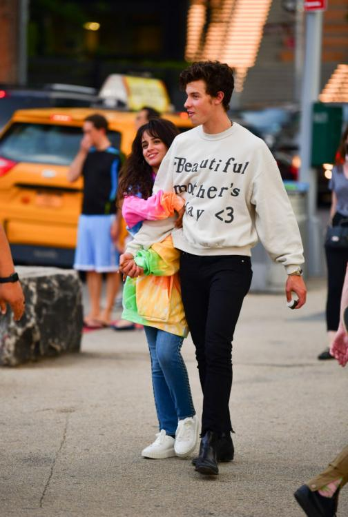 Shawn Mendes and Camila Cabello recently began their romance after the latter broke up with ex-boyfriend Matthew Hussey.