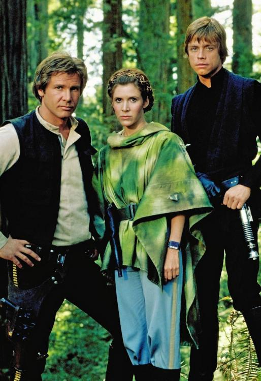 Star Wars: The Rise of Skywalker marked the end of the Skywalker Saga, after four decades.